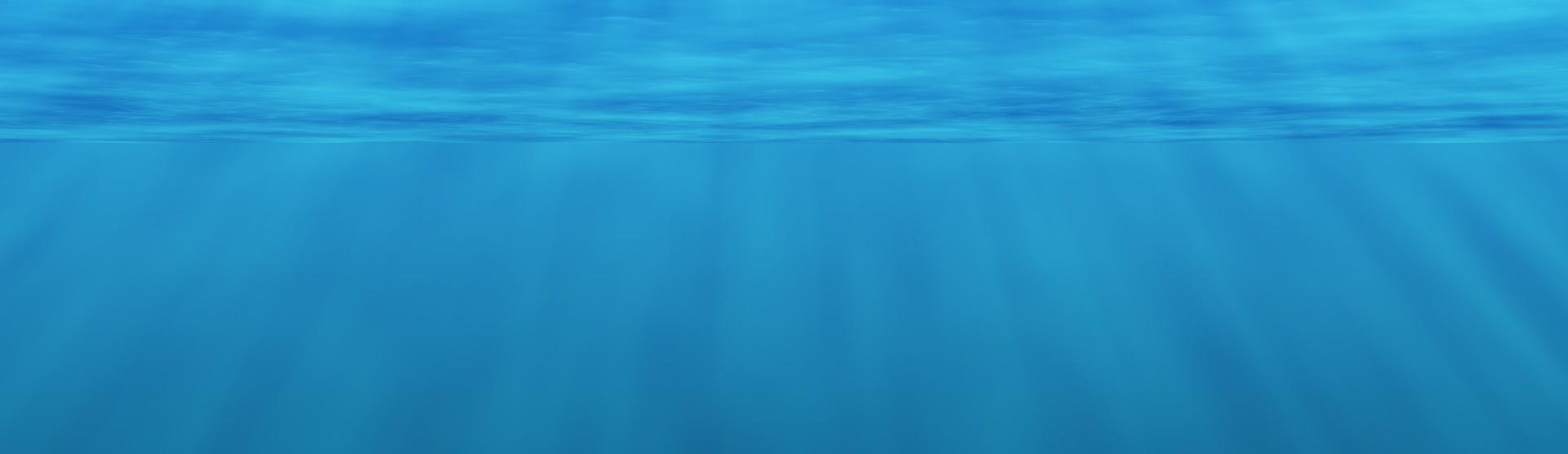 underwater-2615376_1920