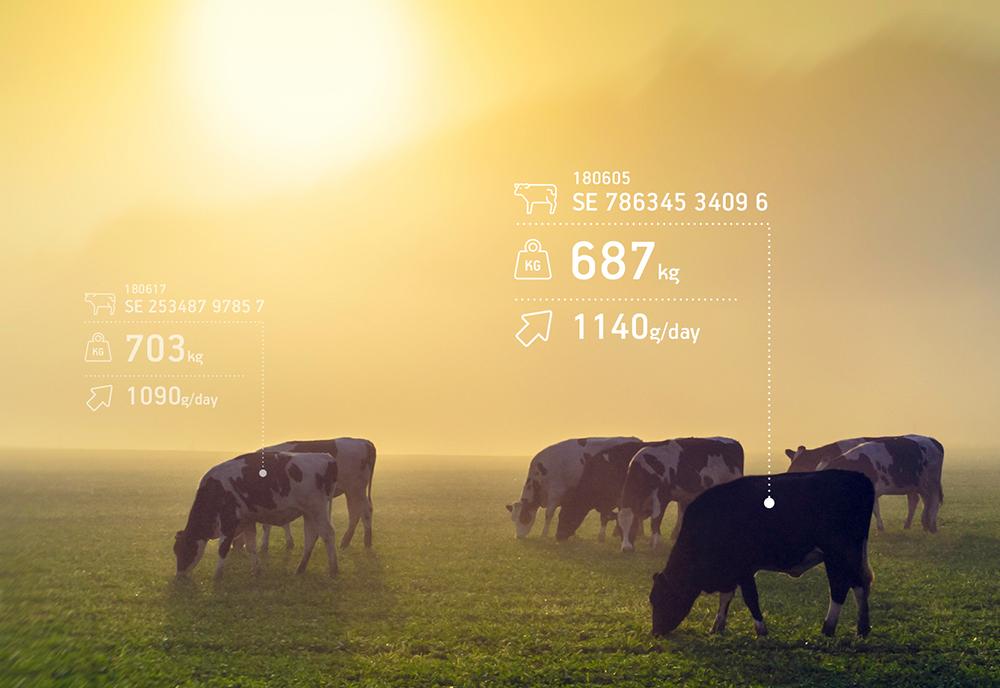 Hencol digitaliserar lantbruket_webb